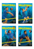 Mastering Men's Volleyball DVD Set  - Free Shipping