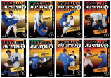 Brazilian Jiu-Jitsu Techniques and Tactics 8 DVD or Download Set - Free Shipping