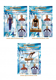 Mastering Men's Gymnastics DVD or Download Set - Free Shipping